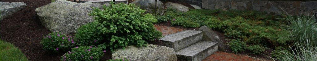 About North Shore Landscaping Professionals